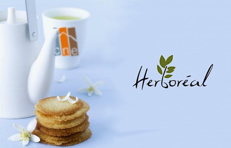 Théière, tasse et logo Herboréal